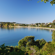 Waiheke Island Full Day Tour